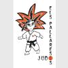 judo-pallaresos